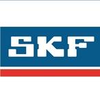 SKF_1 - копия